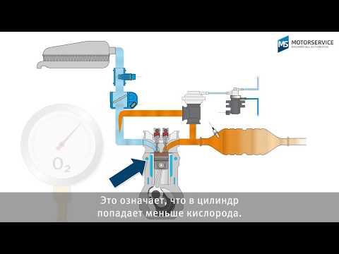 Система рециркуляции выхлопных газов
